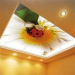 фотопечать на натяжной потолок