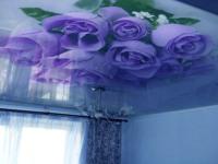 цветы на натяжные потолки